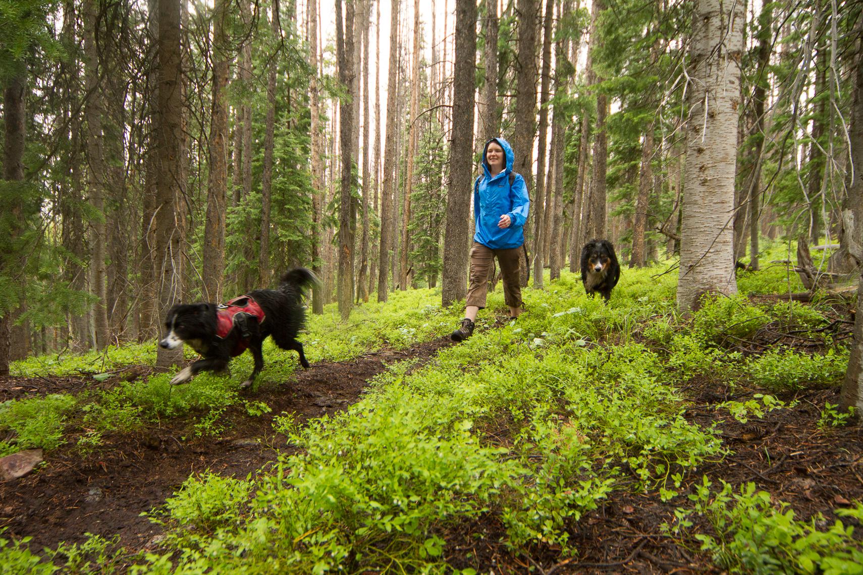 Hinman Trail CO 2